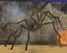 Fun-Express-Realistic-Hairy-Spider-With-LED-Eyes-0