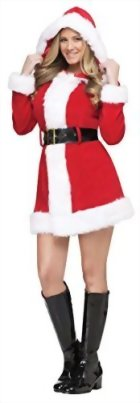 Fun-World-Costumes-Womens-Adult-Merry-Ms-Santa-Costume-0-0