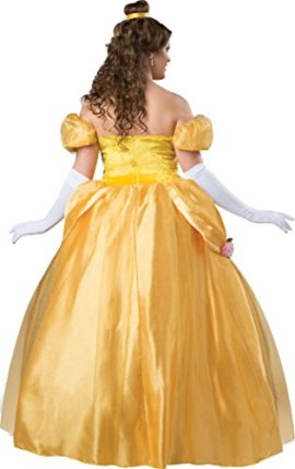 Fun-World-Womens-Plus-Size-Beautiful-Princess-Fitting-Costume-0-0