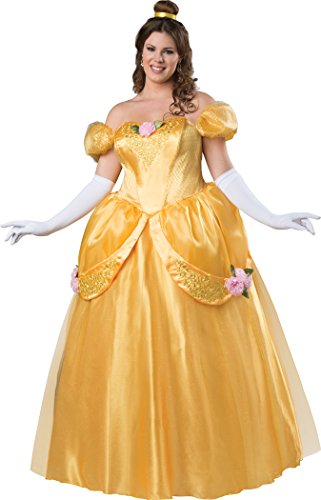 Fun World Women's Plus Size Beautiful Princess Fitting Costume