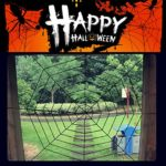 Halloween-Decorations-Hip2cart-10FT-Spider-Web-Decorations-and-Giant-Spider-Decorations-Outdoor-Indoor-0-0