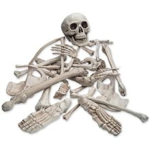 Pawliss-28-Pc-Set-Halloween-Graveyard-Human-Skeleton-Decorations-Life-Size-Bag-of-Plastic-Bones-Skull-Props-Decor-0