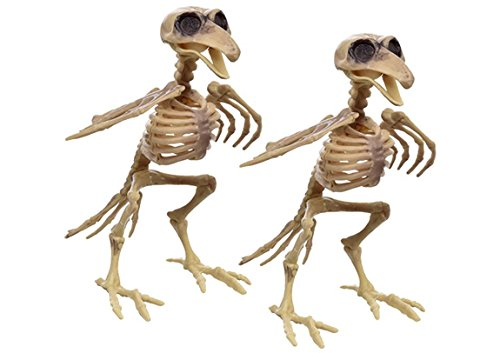 Plastic Bird Skeleton- Set of 2 – Halloween Decoration