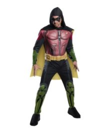 Robin-Arkham-Asylum-Mens-Costume-Video-Game-Batmans-Sidekick-Hero-0