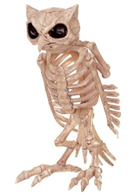 Skeleton-Owl-0