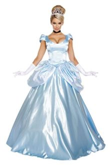 Cinderella Costumes for Women