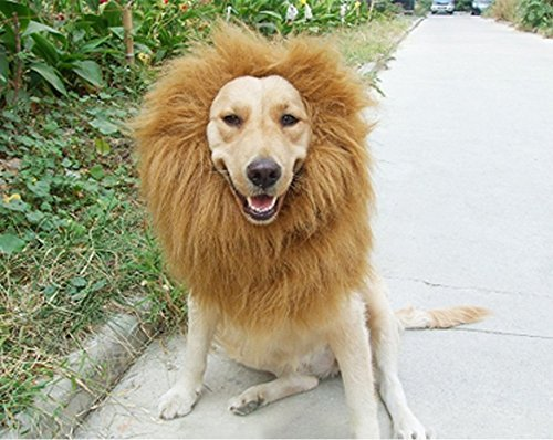 6MILES-1-Pcs-Light-Brown-Adjustable-Washable-Comfortable-Funny-Lion-Mane-Wig-with-Ears-for-Dog-and-Cat-Costume-Pet-Fancy-Hair-Clothes-Dress-for-Halloween-Christmas-Easter-Festival-Party-0