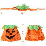 Bascolor-Halloween-Pet-Costume-Pumpkin-Suits-Clothes-Hats-Dress-Headbands-for-Dogs-Cats-Christmas-Festival-Costumes-0-0