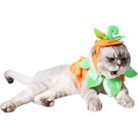 Bascolor-Halloween-Pet-Costume-Pumpkin-Suits-Clothes-Hats-Dress-Headbands-for-Dogs-Cats-Christmas-Festival-Costumes-0-3