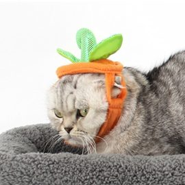 Bascolor-Halloween-Pet-Costume-Pumpkin-Suits-Clothes-Hats-Dress-Headbands-for-Dogs-Cats-Christmas-Festival-Costumes-0-4