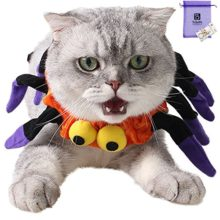 Bolbove-Adjustable-Spider-Halloween-Pet-Neck-Wear-for-Cats-Small-Dogs-Party-Costume-Free-size-0