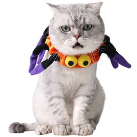 Bolbove-Adjustable-Spider-Halloween-Pet-Neck-Wear-for-Cats-Small-Dogs-Party-Costume-Free-size-0-3