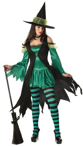 California Costumes Women's Emerald Witch Adult