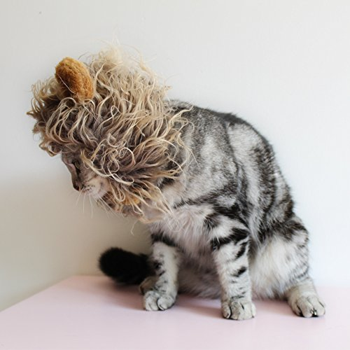 Cat-Apparel-Lion-Mane-for-Cat-Lion-Hair-with-Ears-for-Halloween-Christmas-Easter-Festival-Cosplay-Party-Activity-Pet-Costume-by-AISOMA-0-1