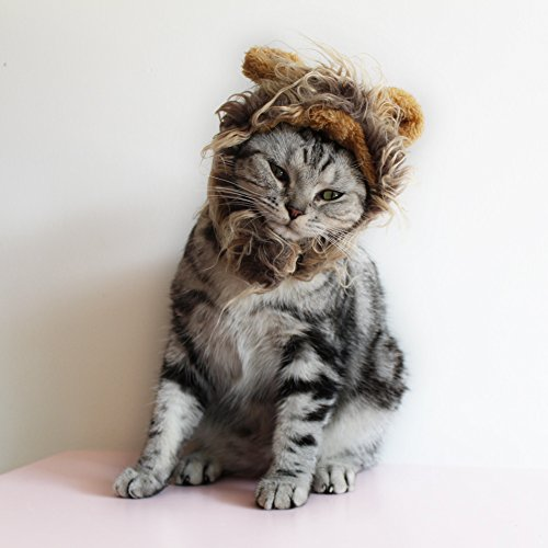 Cat-Apparel-Lion-Mane-for-Cat-Lion-Hair-with-Ears-for-Halloween-Christmas-Easter-Festival-Cosplay-Party-Activity-Pet-Costume-by-AISOMA-0-7