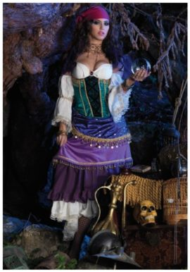Deluxe-Tarot-Card-Gypsy-Costume-0