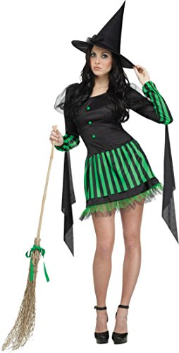 Funworld Womens Wicked Witch Green Accents Theme Party Fancy Halloween Costume