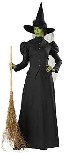 Morris-Costumes-Womens-Witch-Classic-Deluxe-Theme-Party-Fancy-Halloween-Dress-0