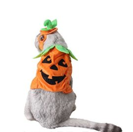 PET-SHOW-Cats-Dogs-Pumpkin-Warm-Adjustable-Costumes-Set-with-Hat-for-Pet-Halloween-Party-Cosplay-Accessories-Outfits-Apparel-Headwear-Pack-of-1-0-0