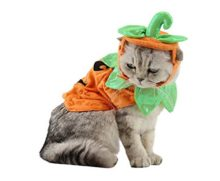 PET-SHOW-Cats-Dogs-Pumpkin-Warm-Adjustable-Costumes-Set-with-Hat-for-Pet-Halloween-Party-Cosplay-Accessories-Outfits-Apparel-Headwear-Pack-of-1-0