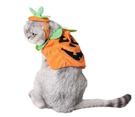 PET-SHOW-Cats-Dogs-Pumpkin-Warm-Adjustable-Costumes-Set-with-Hat-for-Pet-Halloween-Party-Cosplay-Accessories-Outfits-Apparel-Headwear-Pack-of-1-0-3