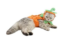 PET-SHOW-Cats-Dogs-Pumpkin-Warm-Adjustable-Costumes-Set-with-Hat-for-Pet-Halloween-Party-Cosplay-Accessories-Outfits-Apparel-Headwear-Pack-of-1-0-4
