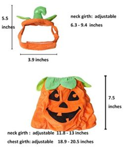 PET-SHOW-Cats-Dogs-Pumpkin-Warm-Adjustable-Costumes-Set-with-Hat-for-Pet-Halloween-Party-Cosplay-Accessories-Outfits-Apparel-Headwear-Pack-of-1-0-5