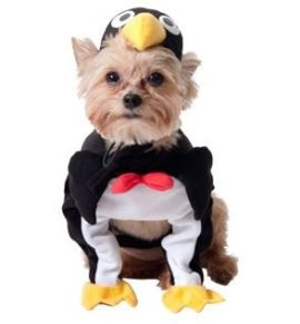 Penguin-Dog-Halloween-Costume-xx-small-0