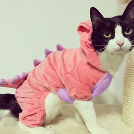 Pet-Plush-Outfit-Dinosaur-Costume-with-Hood-for-Small-Dogs-Cats-Jumpsuit-Winter-Coat-Warm-Clothes-0-2