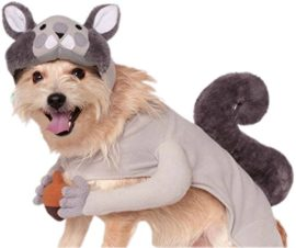 Rubies-Costume-Company-Squirrel-Pet-Costume-0