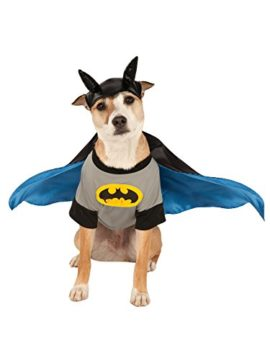 Rubies-Costume-DC-Heroes-and-Villains-Collection-Pet-Costume-0-1