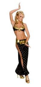 Secret-Wishes-Womens-Playboy-Harem-Girl-Costume-0
