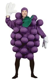 UHC-Mens-Grapes-Fruit-Healthy-Food-Funny-Theme-Adult-Halloween-Costume-0