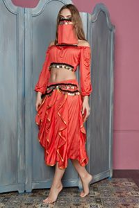 Women-Belly-Dancer-Skirt-Costume-Half-Top-Face-Veil-Bollywood-Gypsy-4-Piece-Set-0-3