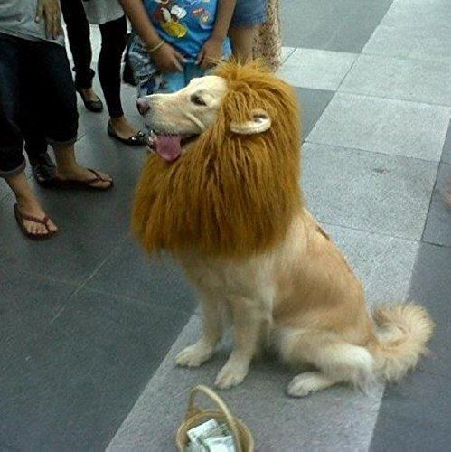 Zamango-Halloween-Lion-Mane-Costume-Lion-Mane-Wig-Large-Dog-Costumes-0