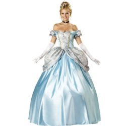 Enchanting-Princess-Adult-Costume-Small-0