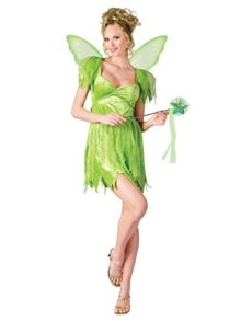 Neverland-Fairy-Costume-Womens-Adult-Costume-0