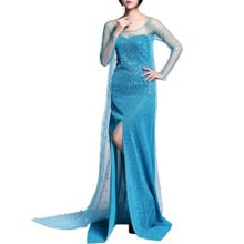 Daily-Proposal-AE1-Adult-Elsa-Dress-Snow-Queen-Snowflake-Halloween-Costume-Cosplay-S-XXL-USA-0