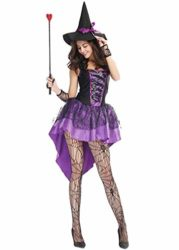 ZQY-Womens-Purple-Witch-Halloween-Costume-Swallowtail-Dress-Adult-Cosplay-Costume-Sexy-Spellcaster-Classic-Fairytale-Dress-0-2