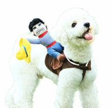 Pet-Costume-Dog-Costume-Pet-Suit-Cowboy-Rider-Style-by-DELIFUR-0