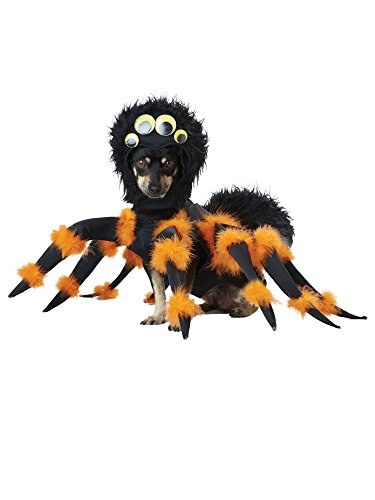 Spider Pup Costume for Pets