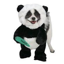 Pandaloon-Panda-Puppy-Dog-and-Pet-Costume-Set-Walking-Teddy-Bear-with-Arms-0