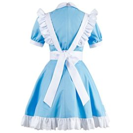 Sidnor-Cosplay-Alice-in-Wonderland-Blue-Maid-Dress-Costume-Outfit-Suit-Apron-New-Version-0-1