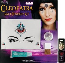 Potomac-Banks-Facial-Jewelry-Stones-Makeup-Kit-with-Free-Pack-of-Makeup-0